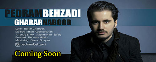 http://up.birmusic.org/view/1959288/pedram-soon.jpg